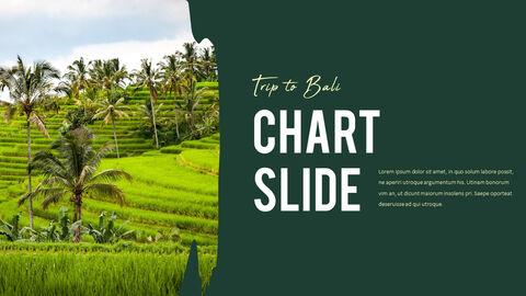 Trip to Bali Presentation PowerPoint Templates Design_36