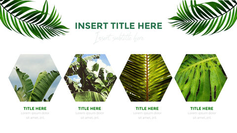 Botanical PowerPoint Templates for Presentation_03