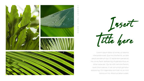 Botanical PowerPoint Templates for Presentation_04