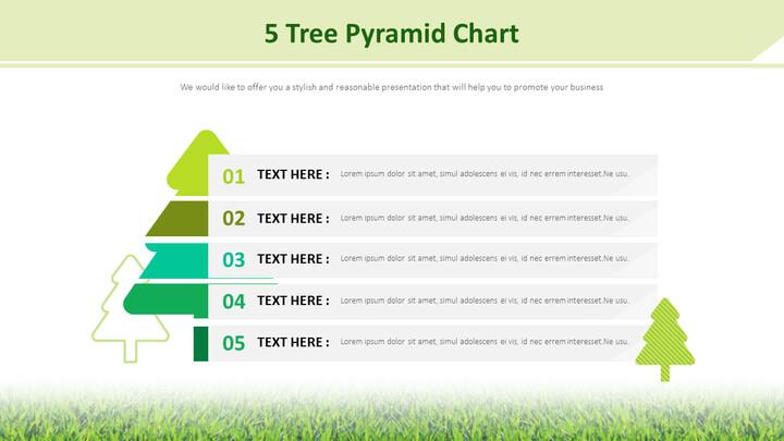 5 나무 피라미드 차트 다이어그램_01