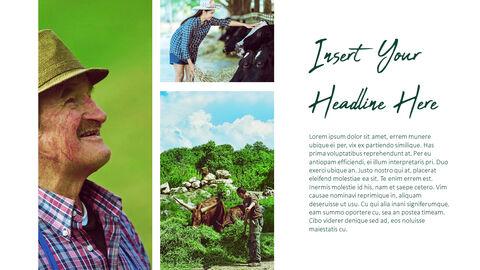 Farm and Livestock Powerpoint Presentation_03