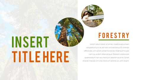 Forestry PowerPoint Templates Design_02