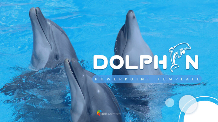 Dolphin PowerPoint Templates for Presentation_01