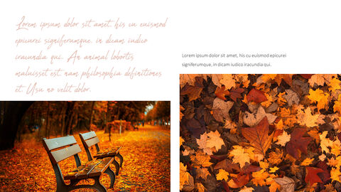 Fall Theme PPT Templates_02