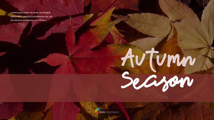 Autumn Season Simple Templates_01