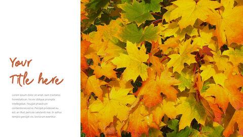 가을 시즌 심플한 템플릿_35