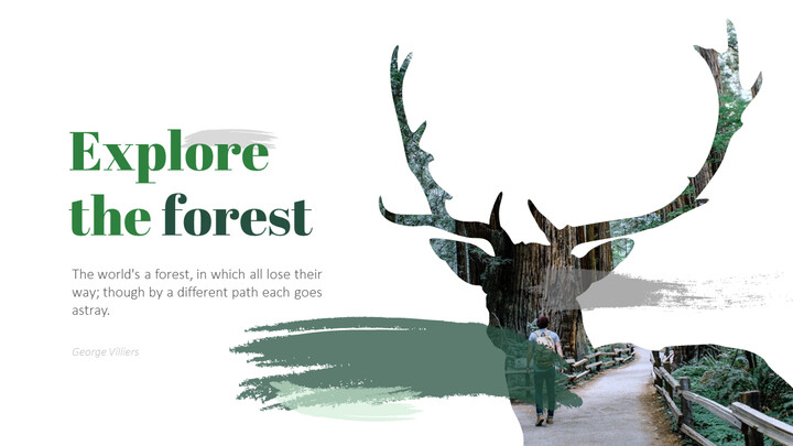 Forest PowerPoint Templates Multipurpose Design_02