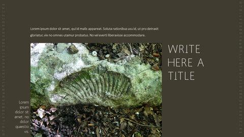 화석 템플릿 PPT_13