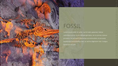 화석 템플릿 PPT_20
