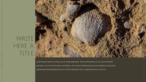 화석 템플릿 PPT_32