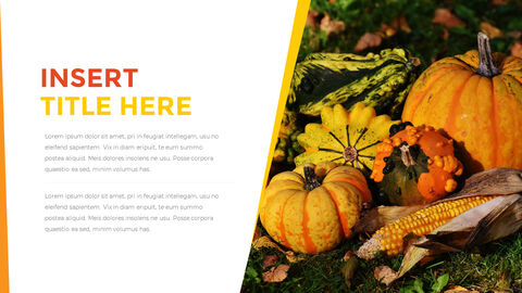 Thanksgiving day Best PowerPoint Templates_03