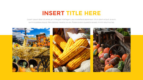 Thanksgiving day Best PowerPoint Templates_05