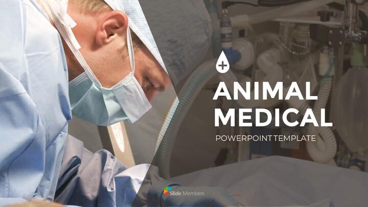 동물 의료 슬라이드 프레젠테이션_01