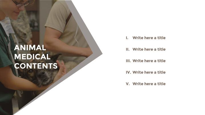 동물 의료 슬라이드 프레젠테이션_02