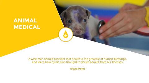 동물 의료 슬라이드 프레젠테이션_03