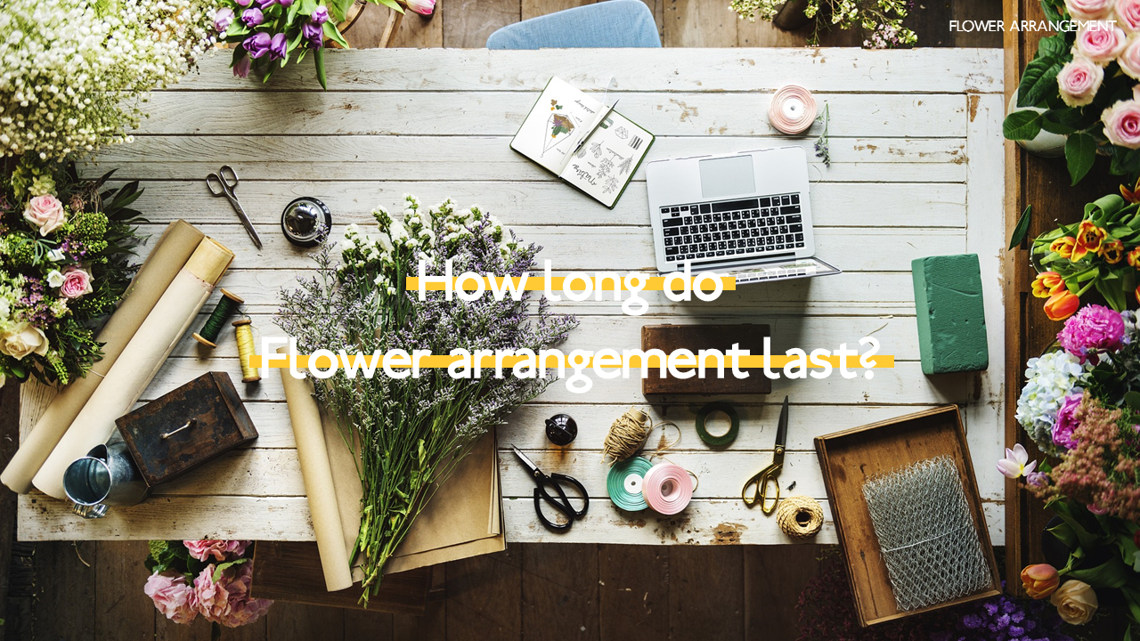 Flower Arrangement Powerpoint Presentations,How To Keep A House Clean With A Big Family