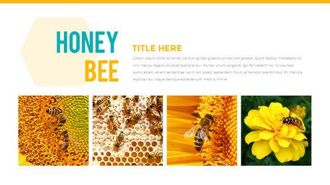허니비(꿀벌) 간단한 디자인 템플릿_05