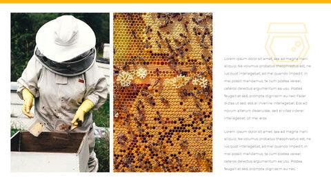 허니비(꿀벌) 간단한 디자인 템플릿_23
