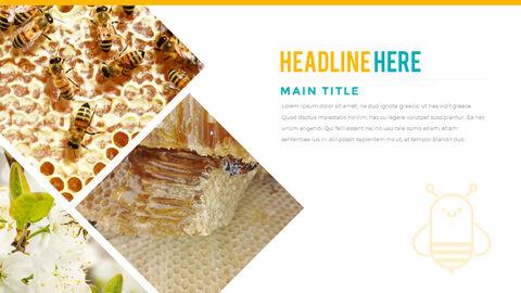 허니비(꿀벌) 간단한 디자인 템플릿_24