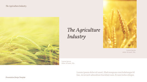 The Agriculture Industry Background PowerPoint_03