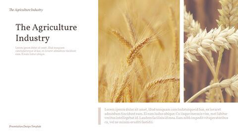 농업 산업 배경 파워포인트_06