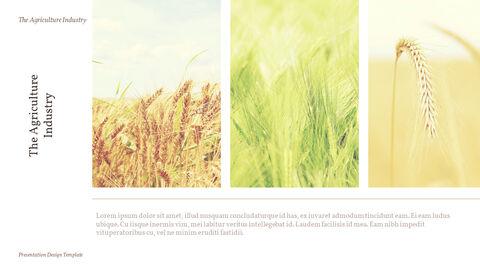 농업 산업 배경 파워포인트_13