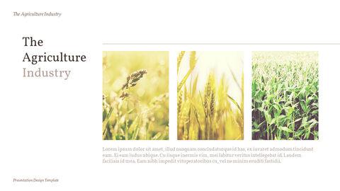 농업 산업 배경 파워포인트_17