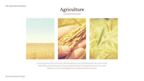 농업 산업 배경 파워포인트_20