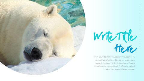 북극곰이 사는 곳 피피티 슬라이드_06