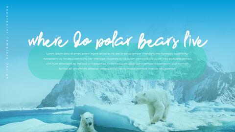 북극곰이 사는 곳 피피티 슬라이드_08