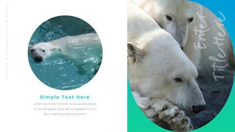 북극곰이 사는 곳 피피티 슬라이드_16