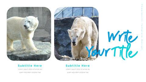 북극곰이 사는 곳 피피티 슬라이드_29