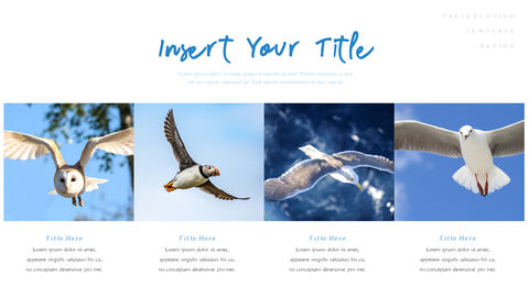 A Flying Bird PowerPoint Table of Contents_03