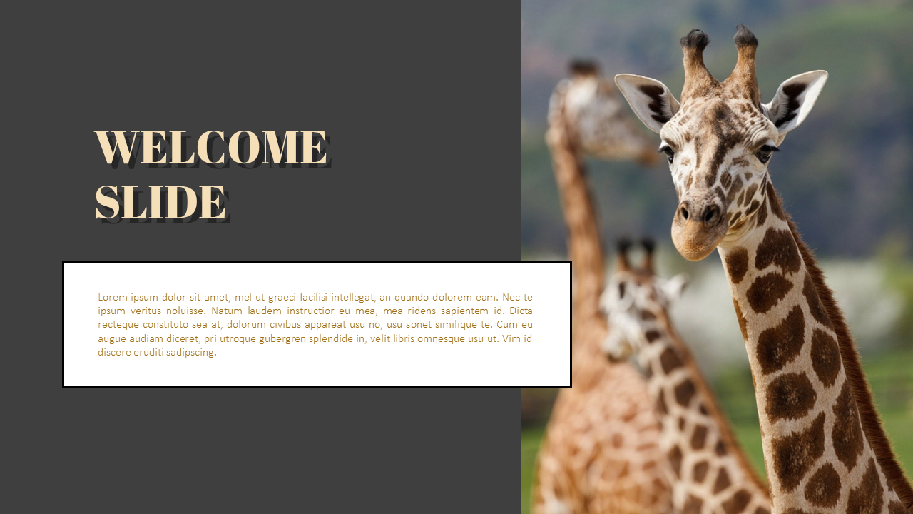 Zoo Powerpoint Templates For Presentation