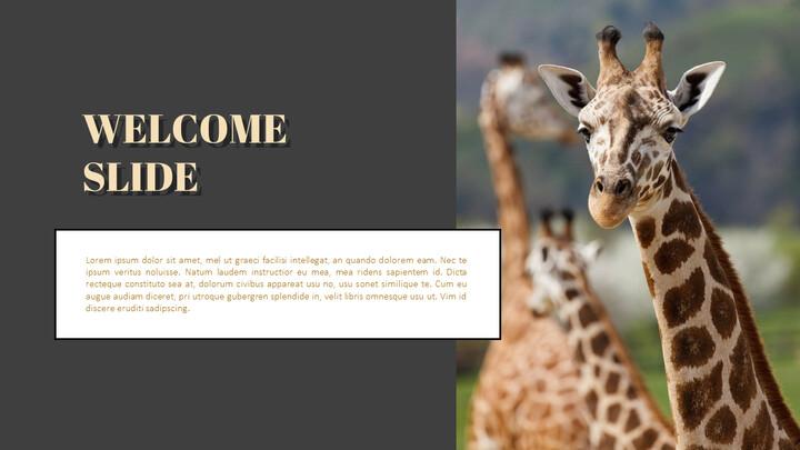 동물원 프레젠테이션용 PowerPoint 템플릿_02