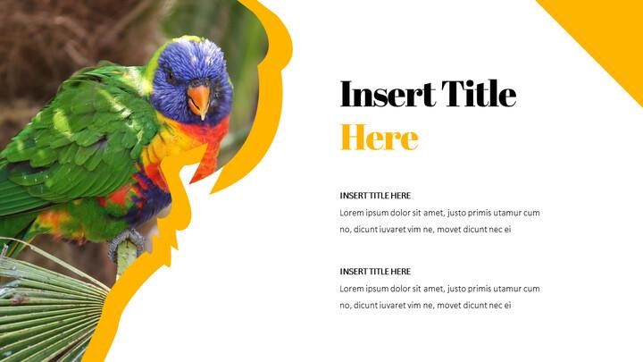 Parrot Best PowerPoint Templates_02