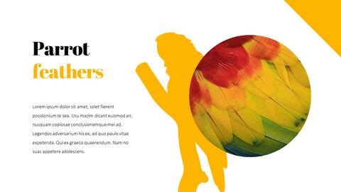 Parrot Best PowerPoint Templates_03