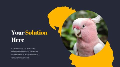 Parrot Best PowerPoint Templates_04