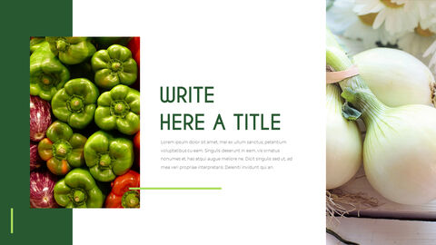 Vegetables Powerpoint Presentation_03