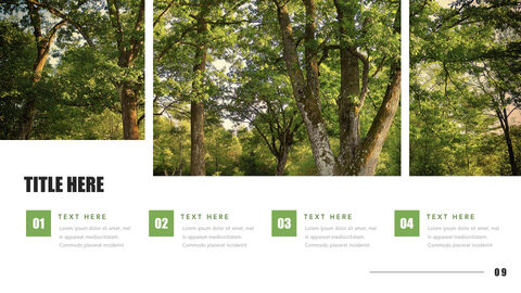 Mountain & Forest Keynote Presentation Template_05