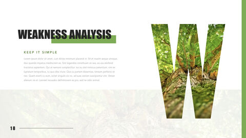 Mountain & Forest Keynote Presentation Template_18