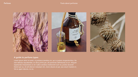 Perfume with Flower Keynote Design_04