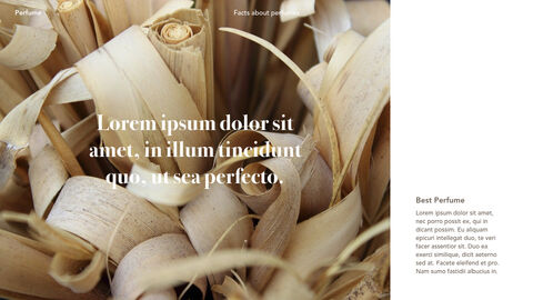 Perfume with Flower Keynote Design_15