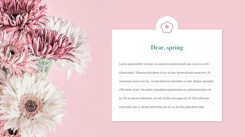 Spring Message Windows Keynote_03