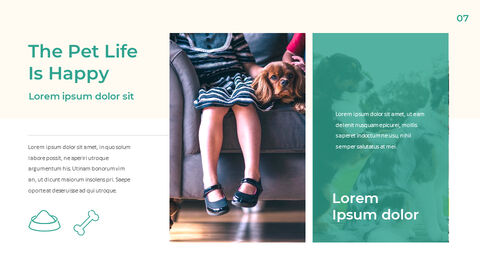 Pet Life Google Slides Templates for Your Next Presentation_03