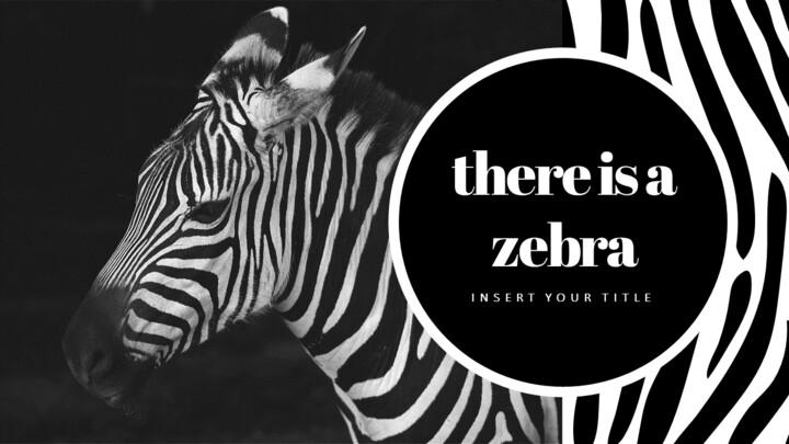 zebra Startup PPT Templates_02