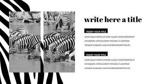 zebra Startup PPT Templates_05