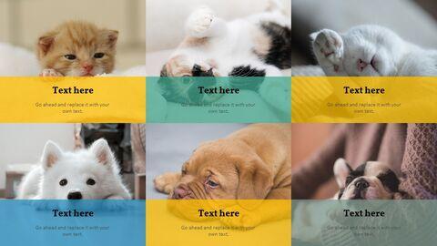 애완 동물 프레젠테이션용 PowerPoint 템플릿_06