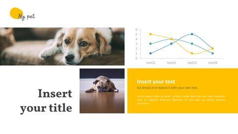 애완 동물 프레젠테이션용 PowerPoint 템플릿_14