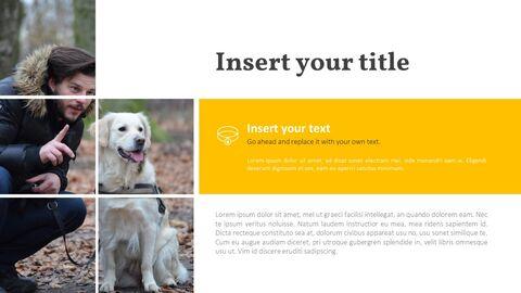 애완 동물 프레젠테이션용 PowerPoint 템플릿_21